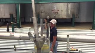 Melissa being distilled at the Young Living St Maries Farm in Idaho - Seed to Seal in action.
