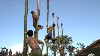 Naga youths climbing a vertical bamboo pole at Hornbill Festival