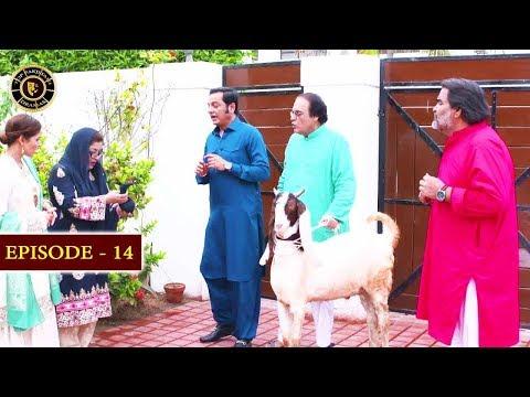 Bulbulay Season 2 | Episode 14 | Top Pakistani Drama