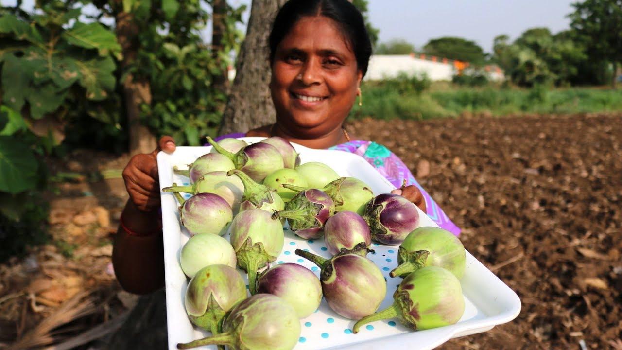 White Brinjal Recipe Eggplant Recipe Country Foods Youtube