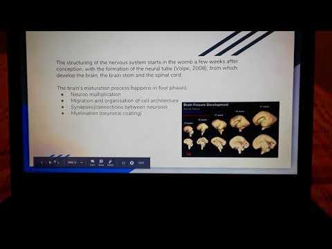 Brain Research in children