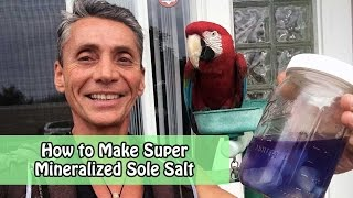 How to Make Super Mineralized Liquid Sole Salt | Dr. Robert Cassar