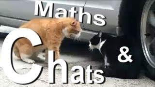 MATH ET MATOU - PAROLE DE CHAT