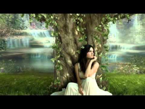 noctura-gone-away-lyrics-melgongas