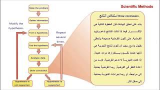Science, explanation of Scientific Methods  Part III