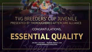 Vidéo de la course PMU TVG BREEDERS' CUP JUVENILE PRESENTED BY THOROUGHBRED AFTERCARE ALLIANCE