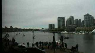 Whale in False Creek