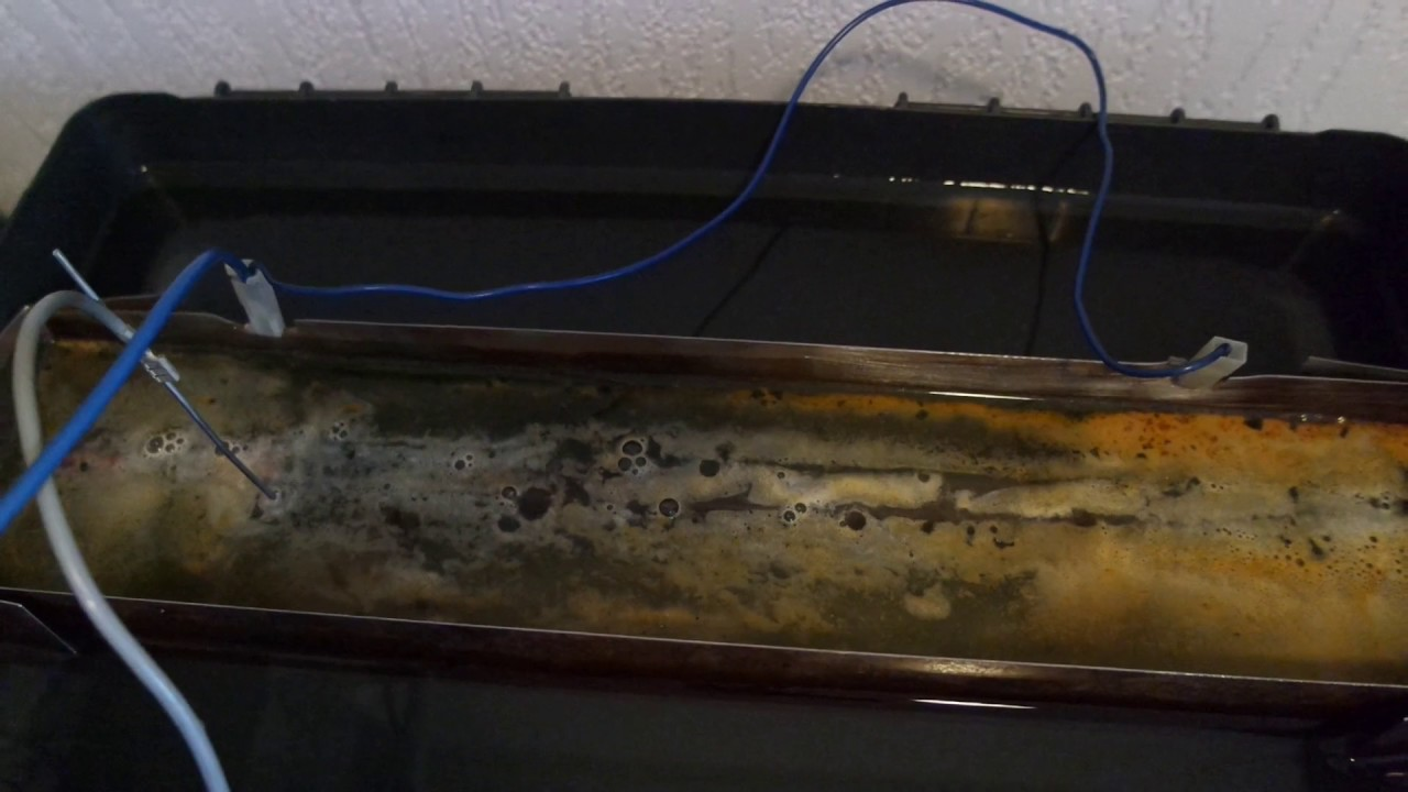 Electro chemical rust removal on a rusty file