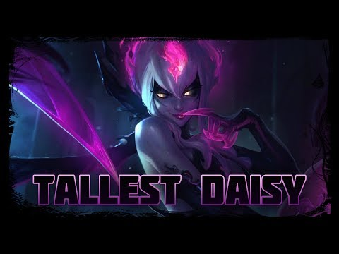 The Tallest Daisy (Evelynn Lore)