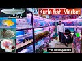 Kurla Fish Market, Pari fish aquarium // Fish Market in Mumbai, fish price and names