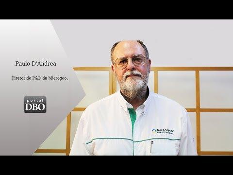 Solo estruturado é a solução, diz  Paulo D'Andrea, diretor de P&D da Microgeo