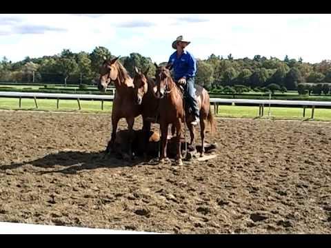 Guy McLean - Australian Horsemanship - Saratoga Horse Expo 9/23/12