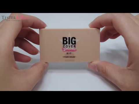 Big Cover Concealer Kit (Pink Bisque, Vanilla, Sand)