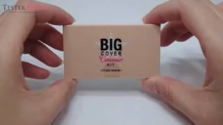 [TESTERKOREA] ETUDE HOUSE Big Cover Concealer Kit