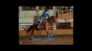 "Barrel Horse For Sale - ""Rain Plus Wind"""