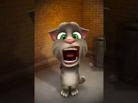 يابابا اسناني واوا بدون إيقاع القط توم المتكلم Youtube