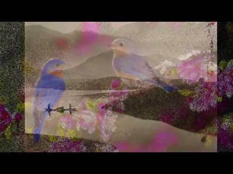 The tao of love-Vangelis- (cover)