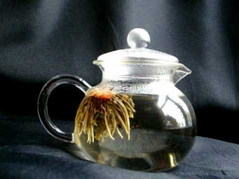 Numi Flowering Tea - Flowering Jewel & Numi Flowering Tea - Flowering Jewel - YouTube