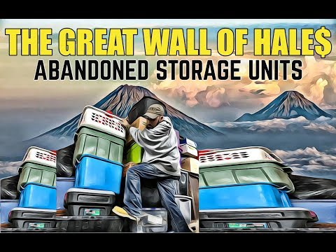 The Great Wall Of Hale$! Abandoned Storage Units! What The Hale$ Online Auction.
