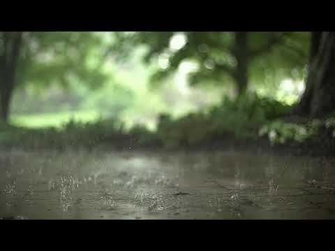 Звуки дождя с раскатами грома плюс дудук