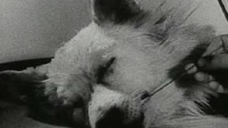 Experiment (1940) Part 1