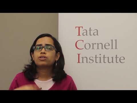TCI Scholar Shiuli Vanaja On Access To Piped Water Time