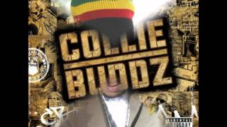 Download Turbulence & Collie Buddz - Notorious/ Blind To You Remix MP3 song and Music Video