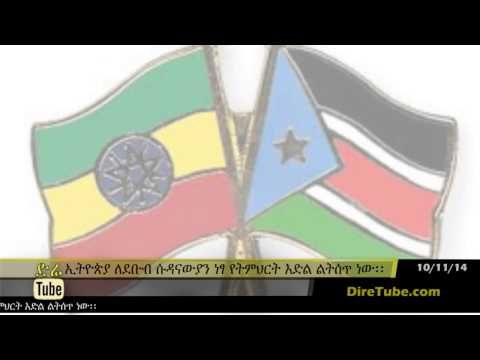 Ethiopia to grant scholarship, technical aid to South Sudan