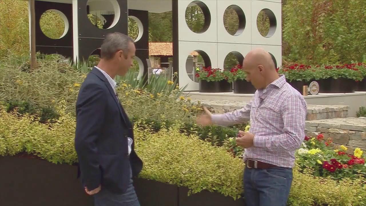 Abelia Kaleidoscope With Milton Vadoulis Chris Sargent Youtube