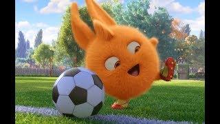 써니 버니 SUNNY BUNNIES 축구 팀 | 어린이를위한 재미있는 만화 | WildBrain