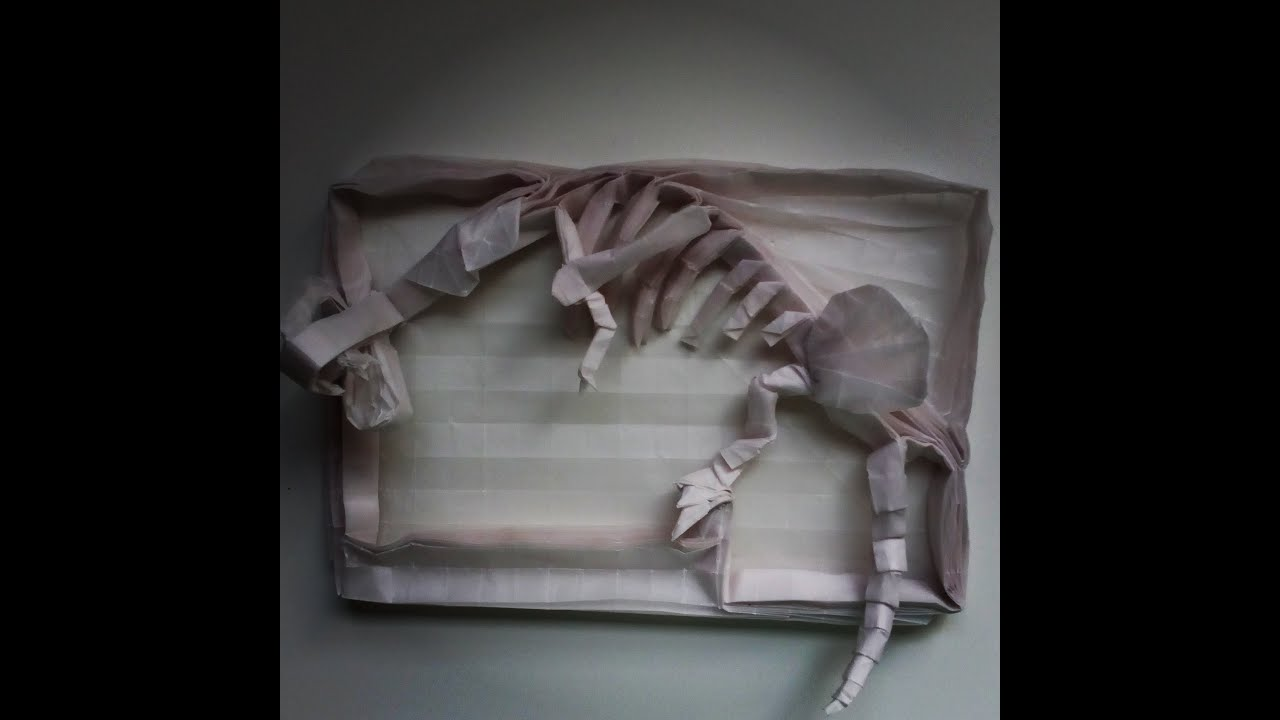 Origami Dinosaur Skeleton Time Lapse - YouTube - photo#2