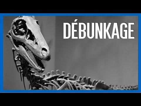 Didi Chandouidoui et le Troodon - IRL