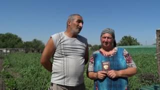 Жизнь без паспорта в Ростовской области