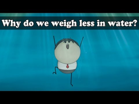 Archimedes Principle - Why do we weigh less in water?