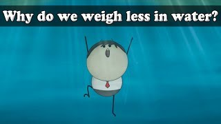 Archimedes Principle - Why do we weigh less in water?   #aumsum