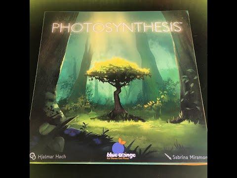 Фотосинтез Photosynthesis настольная игра распаковка обзор компонентов