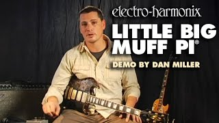 Little Big Muff Pi - Demo by Dan Miller - Distortion/ Sustainer