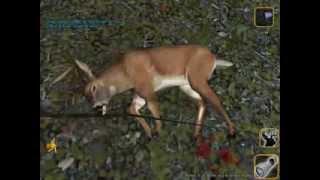 Deer Hunter 2005 Season Game