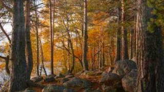 Video Vivaldi - The Four Seasons, Autumn download MP3, 3GP, MP4, WEBM, AVI, FLV September 2018