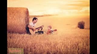 Bố ơi mình đi đâu thế cover guitar