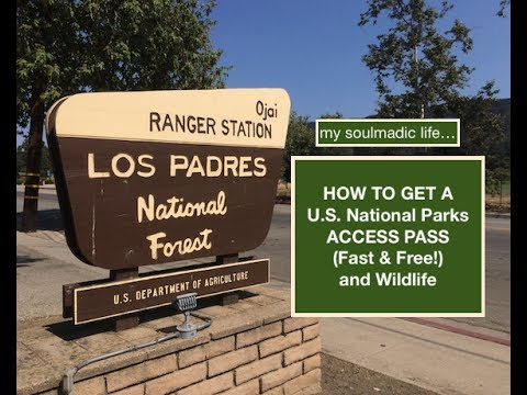 Soulmadic 13 - Obtaining A U.S. National Forest Access Pass For Free