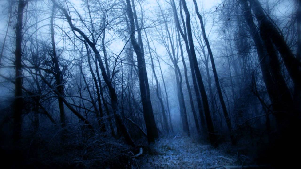 Nacht - I (journey into the unknown and eerie dark forest ...