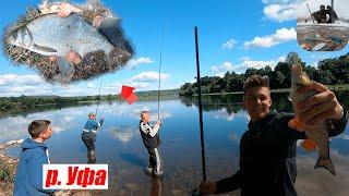 Ловля ЛЕЩА И ГОЛАВЛЯ с БАТЕЙ Рыбалка на реке Лещ на удочку