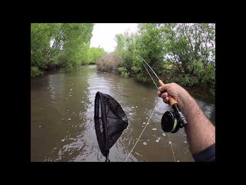 28 10 2020 Worms And  Fly Fishing River