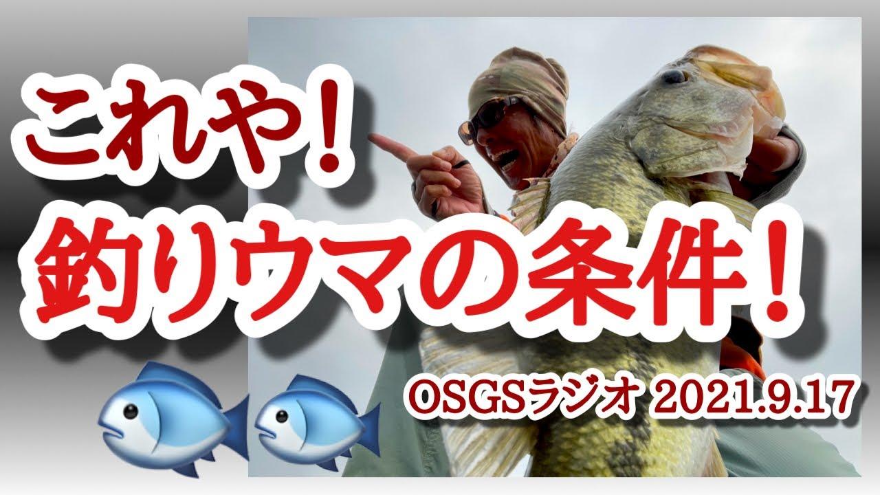 【OSGSラジオ 2021.9.17】これや!釣りウマの条件!【琵琶湖バス釣り】