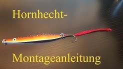 Hornhecht - Montage Anleitung
