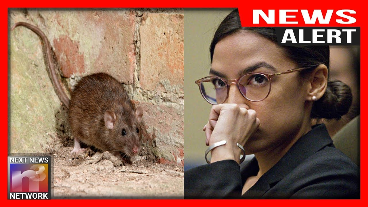 ALERT: Bad News Hits AOC, MAGGOT INFESTED District EXPOSED - While She's Yapping About the Border!