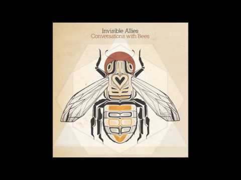 Invisible Allies - Conversations With Bees [Full Album]