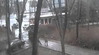 Вырубка деревьев с сквере(, 2012-04-03T07:28:51.000Z)
