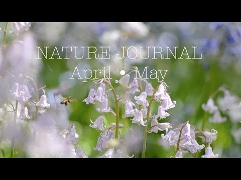 Nature Journal [APRIL • MAY]
